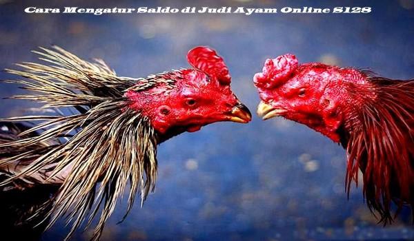 Cara Mengatur Saldo di Judi Ayam Online S128